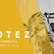 botez-13-nov-2016